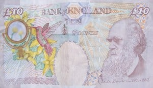 Darwin Ten Pound Note HR